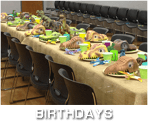 Birthdays_Rental_category