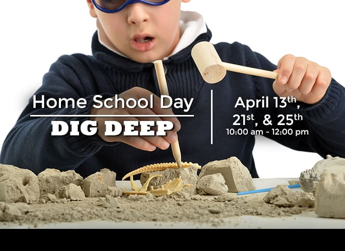 Home School Day – Dig Deep