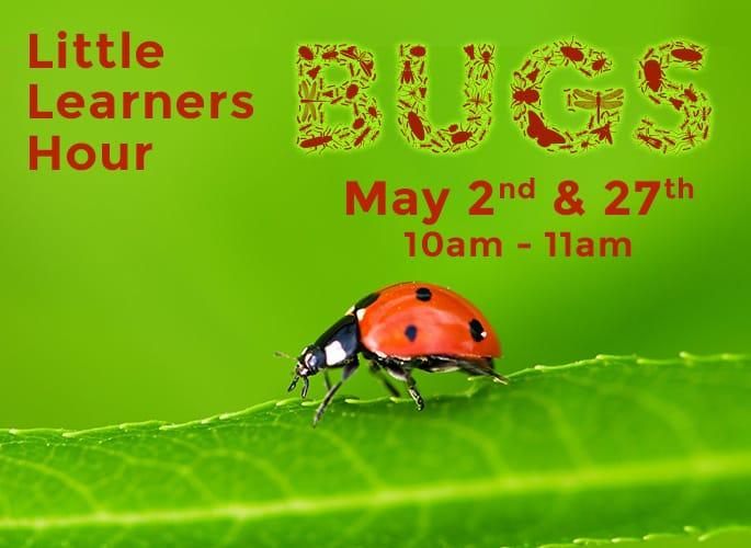 Little Learners Hour – Bugs!